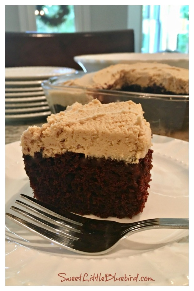 Chocolate-Peanut-Butter-Crazy-Cake-1a