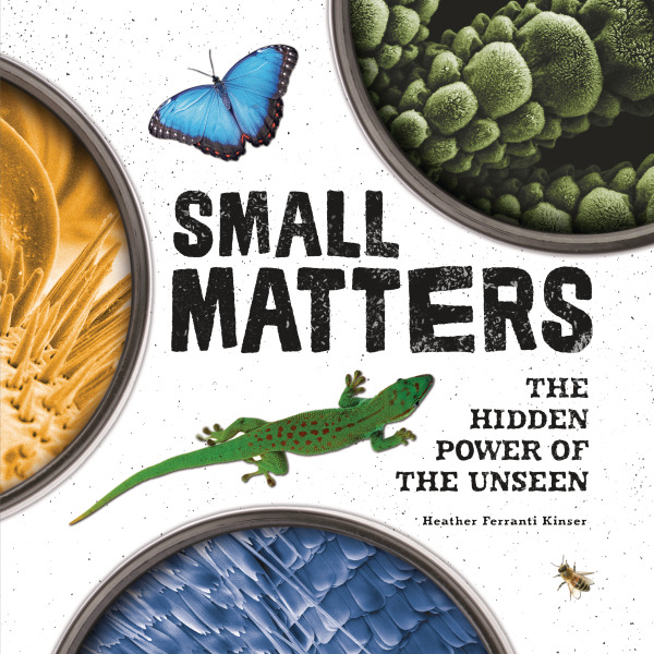 SmallMattersApprovedCoverImage